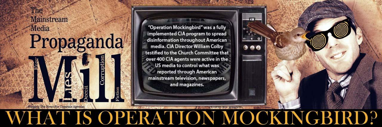 Hdr-OperationMockingbird